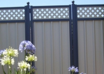 colorbond-gates-with-lattice-medium